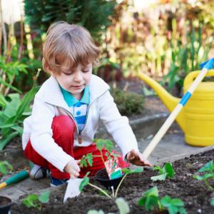 Childrens Gardening