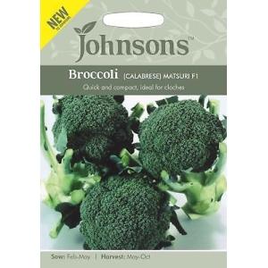 Broccoli Calabrese Matsuri F1 JAZ