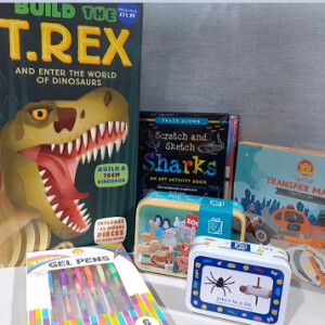 Childrens Craft And Hobby Bundle
