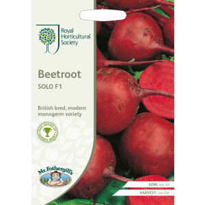 Beetroot Solo F1 Rhs
