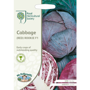 Cabbage Red Rookie F1 Rhs