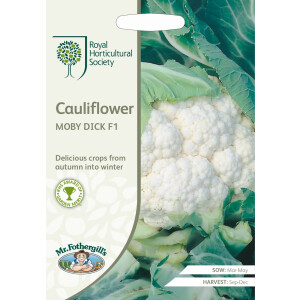Cauliflower Moby Dick F1 Rhs