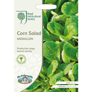 Corn Salad Medaillon Rhs