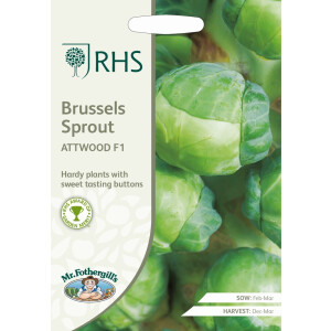 Brussels Sprout Attwood F1 RHS