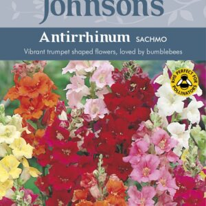 Antirrhinum Sachmo Jaz