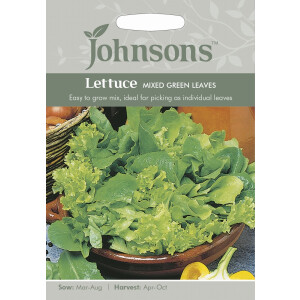Lettuce Mixed Green Leaves JAZ