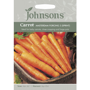 Carrot Amsterdam Forcing 3 Sprint JAZ