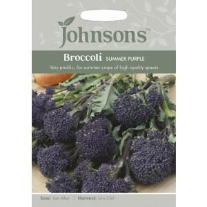 Broccoli Summer Purple Jaz