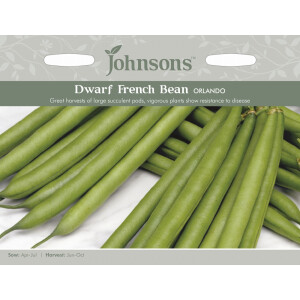 Dwarf French Bean Orlando Jaz