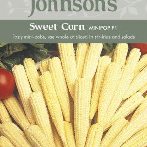 Sweet Corn Minipop F1 JAZ