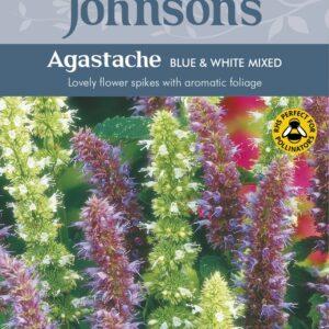 Agastache Blue+White Mixed Jaz