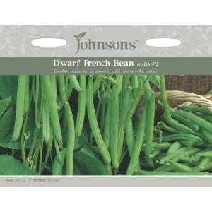 Dwarf French Bean Andante JAZ