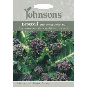 Broccoli Early Purple Sprouting JAZ