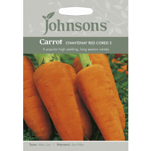 Carrot Chantenay Red Cored 2 JAZ