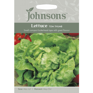 Lettuce Tom Thumb JAZ