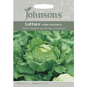 Lettuce Webbs Wonderful JAZ