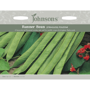 Runner Bean Polestar Stringless JAZ
