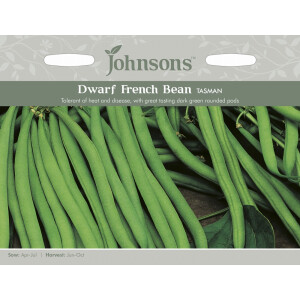 Dwarf French Bean Tasman JAZ