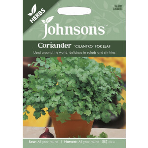 Coriander Cilantro For Leaf JAZ