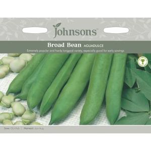 Broad Bean Aguadulce JAZ