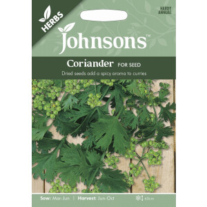 Coriander For Seed JAZ