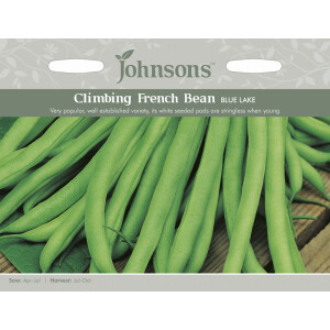 Climbing French Bean Blue Lake Jaz