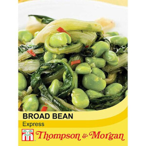 Broad Bean Express