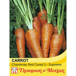 Carrot Chantenay Red Cored 3 Supreme