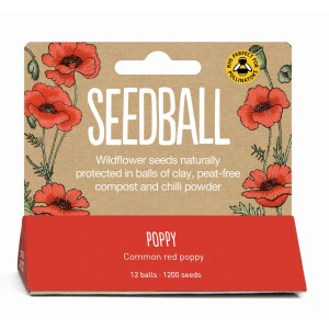 Seedball Poppy
