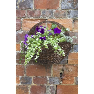 Hyacinth Wall Basket 16in