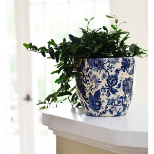 Monza Pot Cover Vintage Blue 16cm