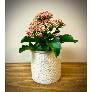 Floral Embossed White Pot Cover 13Cm