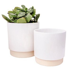 Eno Pot Duo White 10Cm