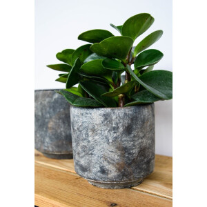Tivoli Planter Earth 18cm