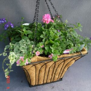 Planted Square Black Metal 16inch Hanging Basket