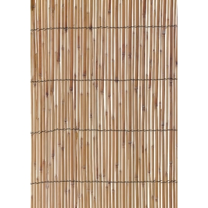 Reed Screen 1.8X3.8M