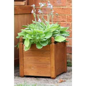Acorn Planter Beech 460mm