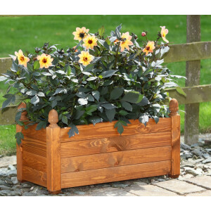 Acorn Trough Beech 660mm