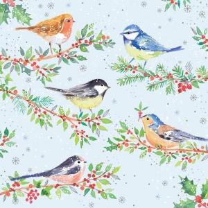 Pack 10 RSPB Christmas Cards Festive Birds