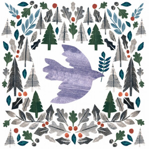 Pack 10 RSPB Christmas Cards Dove