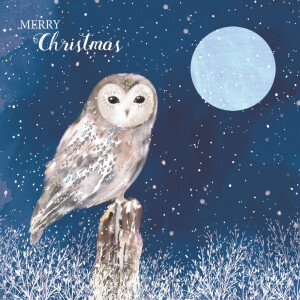 Pack 10 RSPB Christmas Cards Midnight Owl