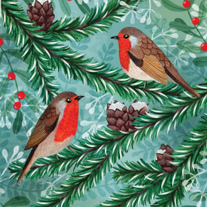 Pack 10 RSPB Christmas Cards Little Robins