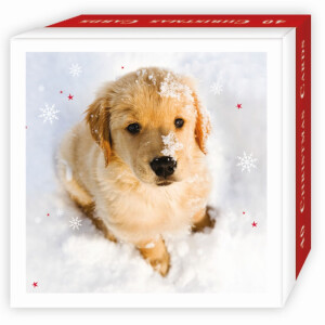 40 Assorted Puppies Christmas Cards