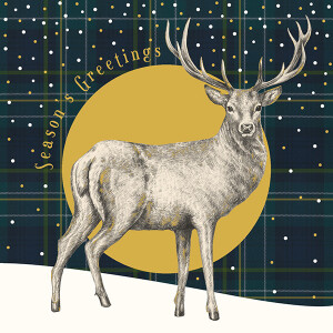 Pack of 6 Charity Cards Highland Stag Design – RSPCA