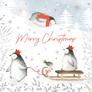 Pack of 6 Charity Cards Penguins Design –  CLIC Sargent