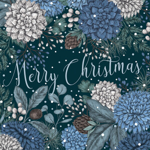 A Box of 8 Luxury Boxed Christmas Cards Saphire and Snow