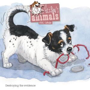 Alisons Animals Wiro 2021 Calendar