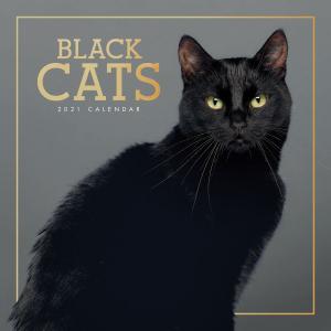 Black Cats 2021 Calendar