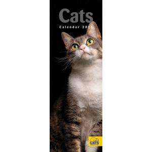 Cats Protection 2021 Calendar