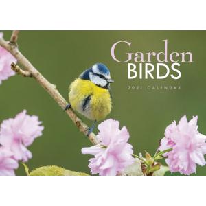 Garden Birds A4 2021 Calendar